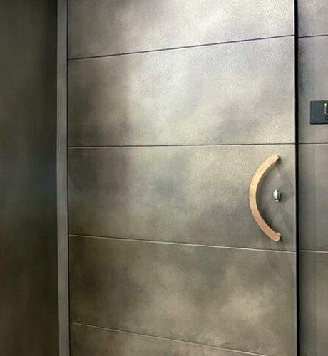 Axolotl Nickel Coated Metal Front Door