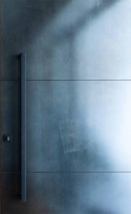 Axolotl Metal Door Steel Blackened